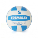 Volleyball TRAINING VOLLEY Taille 5